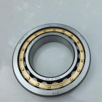 160 mm x 290 mm x 48 mm  SKF NUP 232 ECML thrust ball bearings